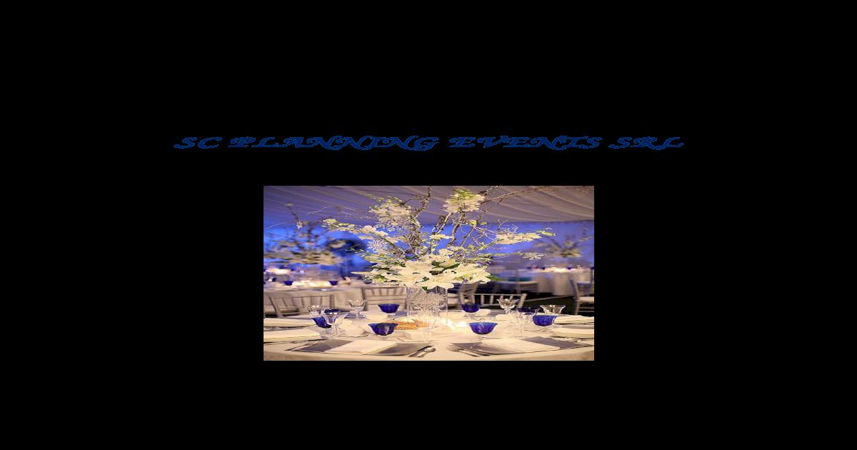 Plan De Afaceri Firma De Organizare Evenimente Sc Planning Events Srl