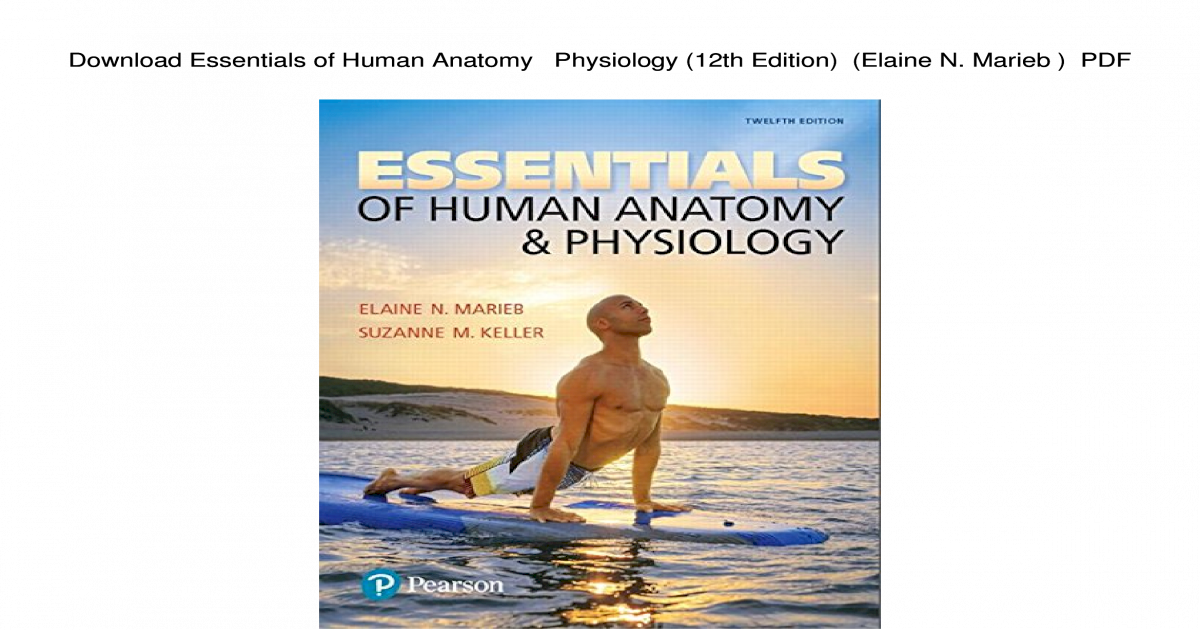 Download Essentials Of Human Anatomy Physiology 12th Edition